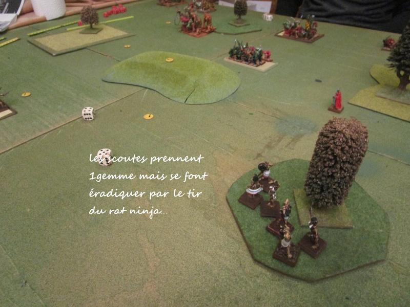 Dragon rampant : chats contre rats (un classique) Img_1110