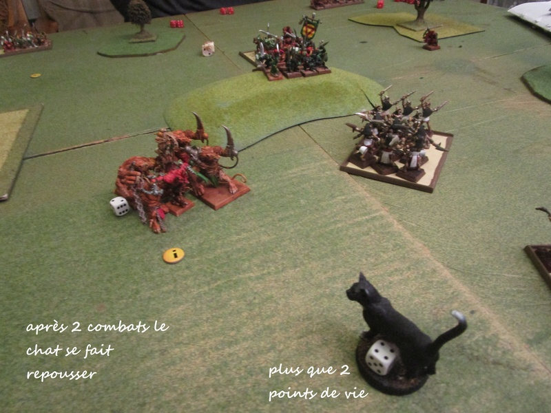 Dragon rampant : chats contre rats (un classique) Img_1111