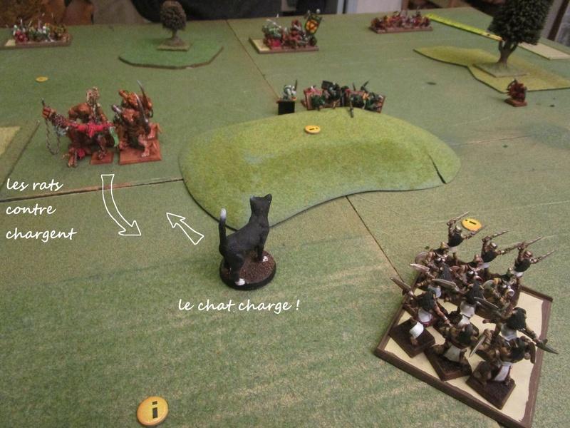 Dragon rampant : chats contre rats (un classique) Img_1112
