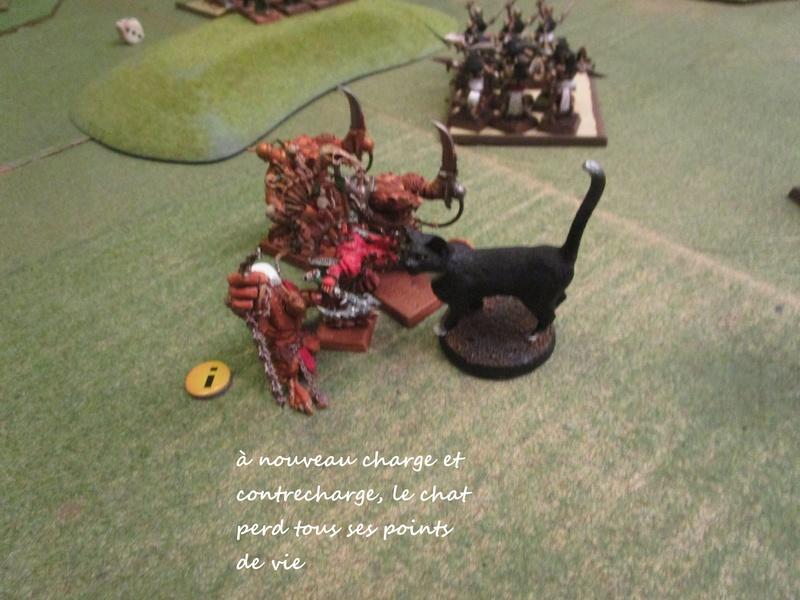 Dragon rampant : chats contre rats (un classique) Img_1210