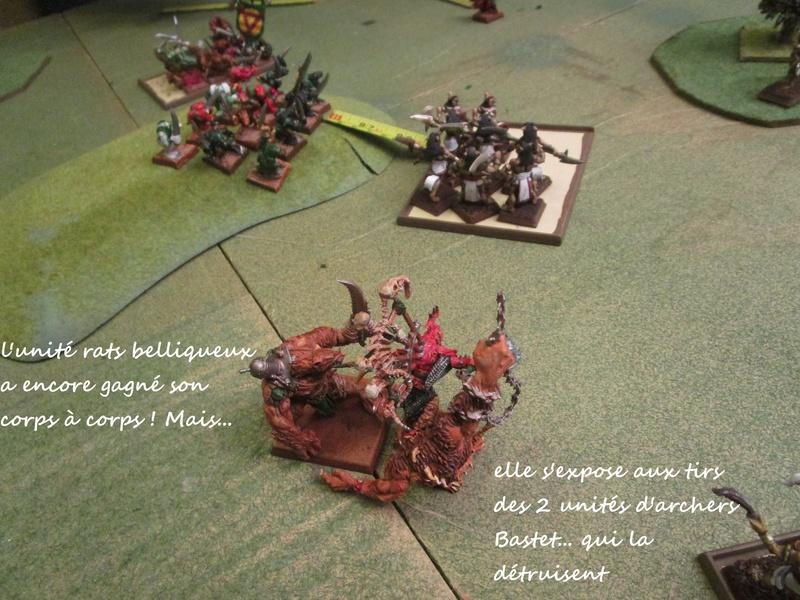 Dragon rampant : chats contre rats (un classique) Img_1213