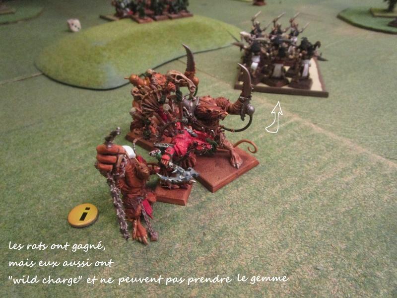 Dragon rampant : chats contre rats (un classique) Img_1214