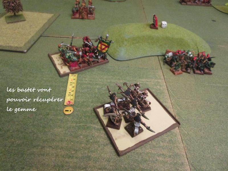 Dragon rampant : chats contre rats (un classique) Img_1219