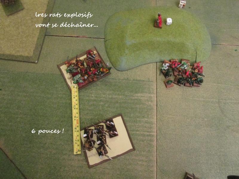 Dragon rampant : chats contre rats (un classique) Img_1220