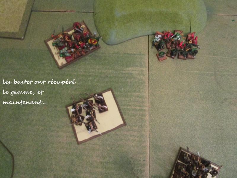 Dragon rampant : chats contre rats (un classique) Img_1221