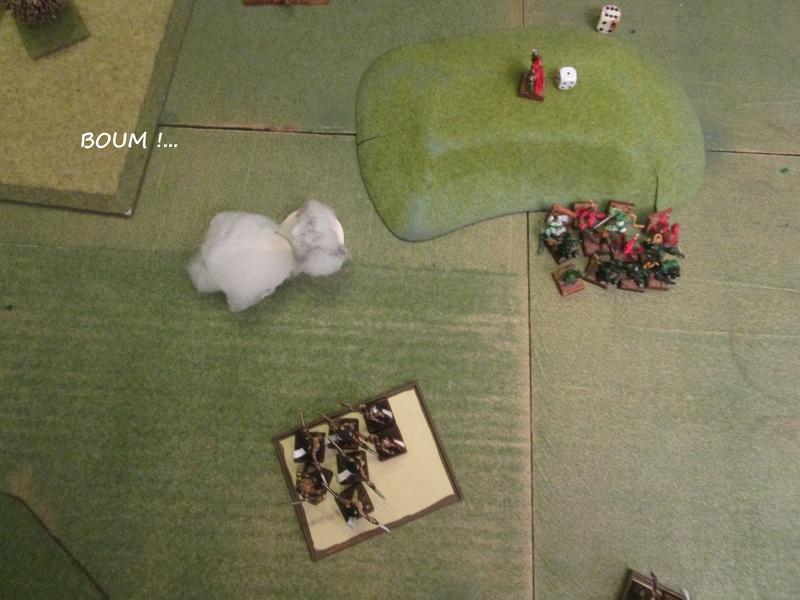 Dragon rampant : chats contre rats (un classique) Img_1222