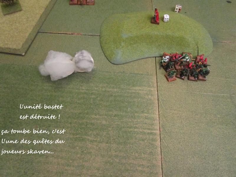Dragon rampant : chats contre rats (un classique) Img_1223