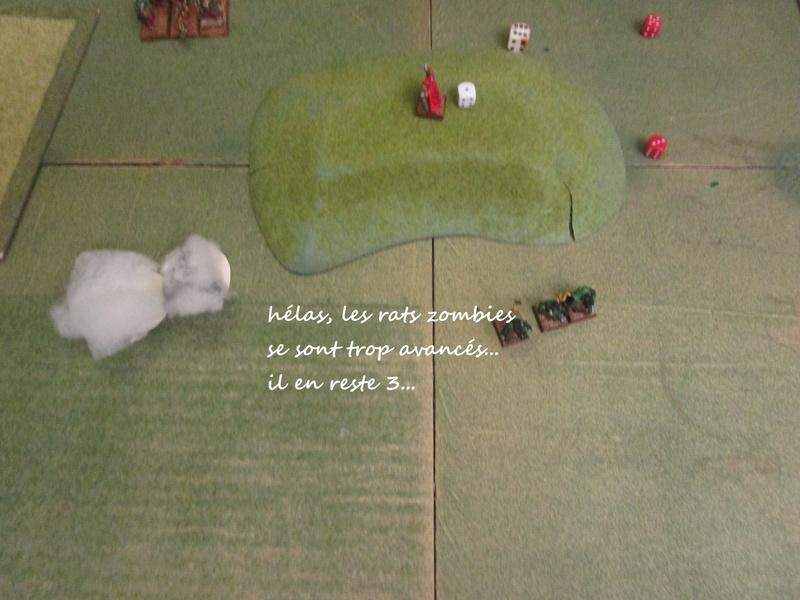 Dragon rampant : chats contre rats (un classique) Img_1224