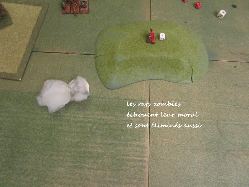 Dragon rampant : chats contre rats (un classique) Img_1225