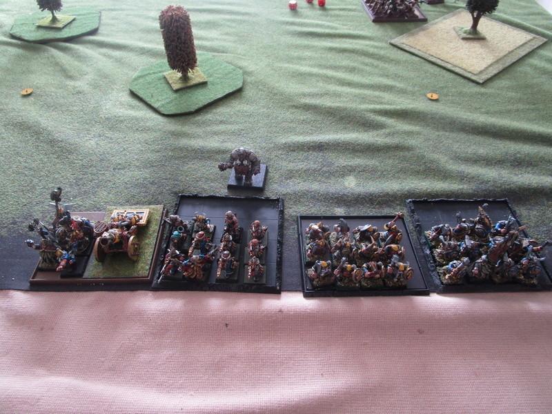 dragon rampant, chats contre nains puis ogres Img_1311