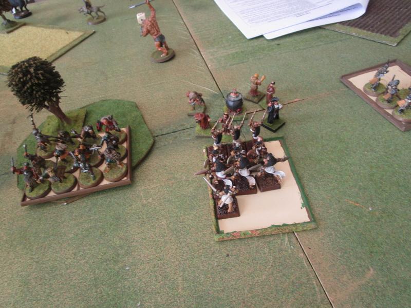 dragon rampant, chats contre nains puis ogres Img_1318