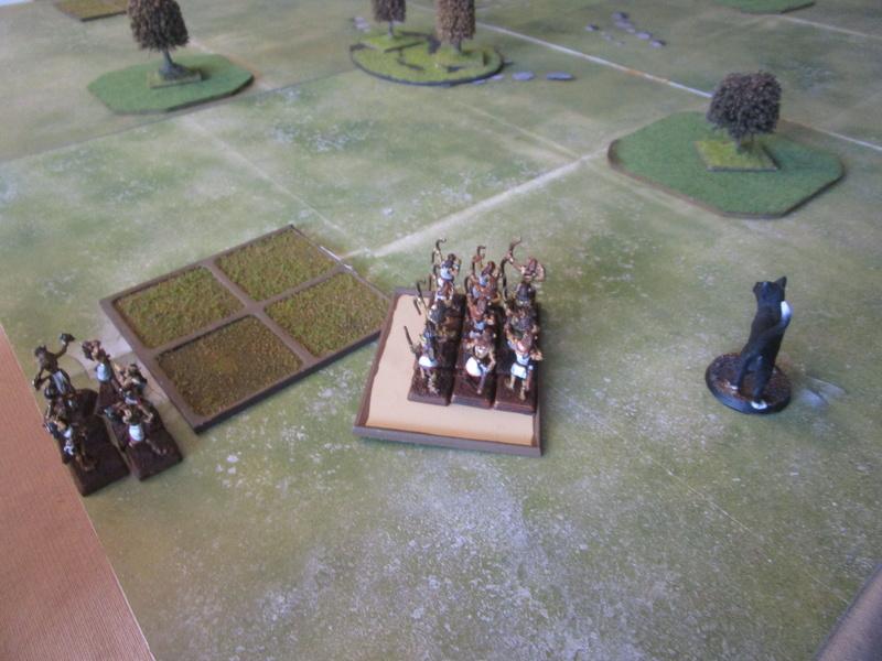 les Marcus's Ogres vs les Bastet Img_1414