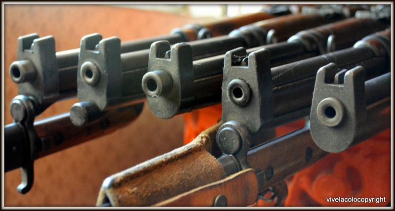 Carabine Suédoise mle 1894/1914 Dsc_0429