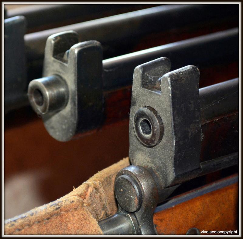Carabine Suédoise mle 1894/1914 Dsc_0431