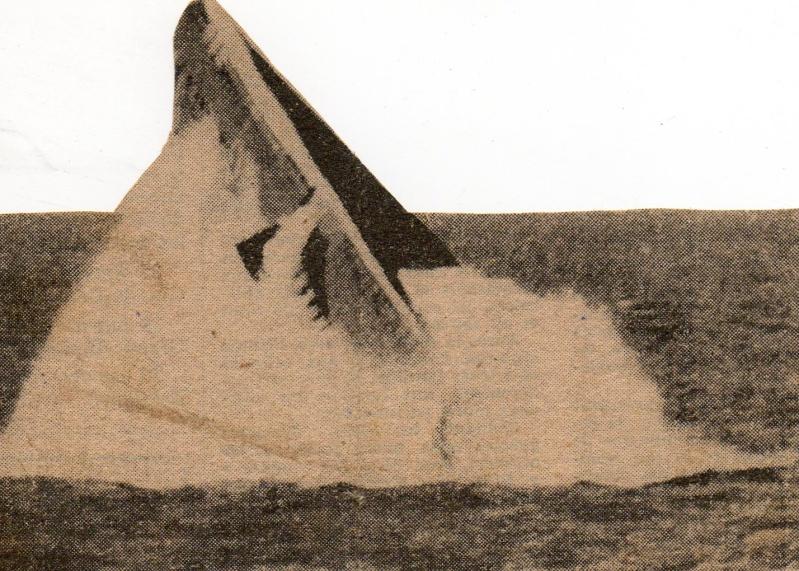 BOUAN (SM) Img18610
