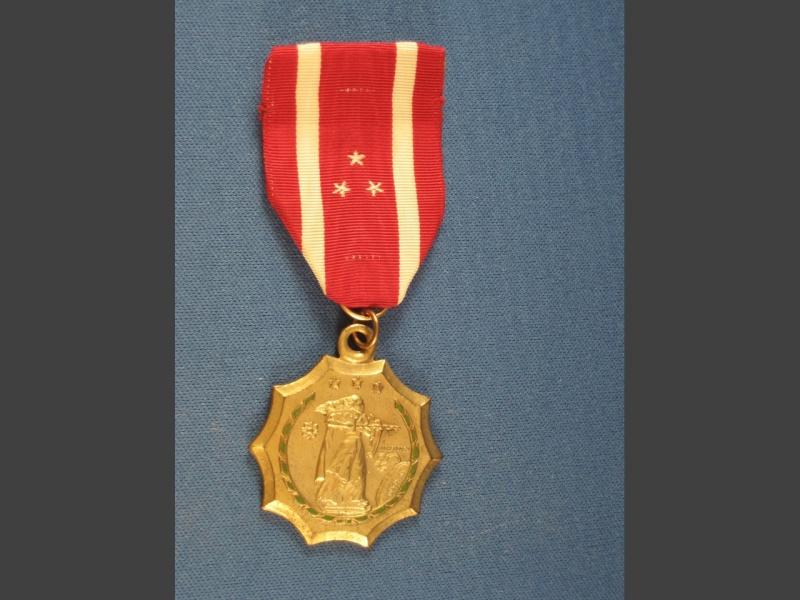 Philippine Defense Medal F014_212