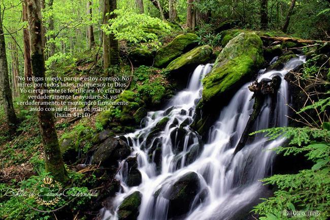 Isaias 41:10 Isaias10