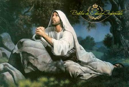 Jesucristo ora en el  getsemani Jesucr10