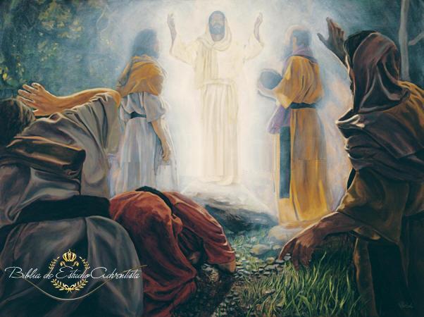 La transfiguracion de Jesus La_tra10