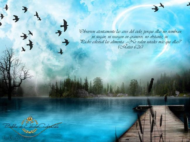 Mateo 6:26 Mateo10