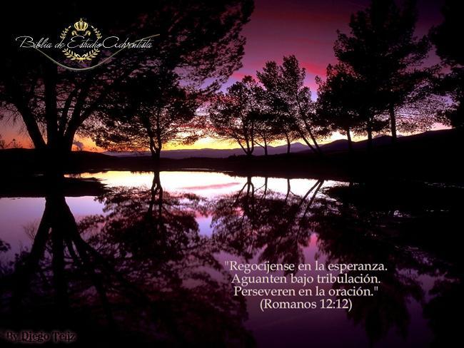 Romanos 12:12 Romano10