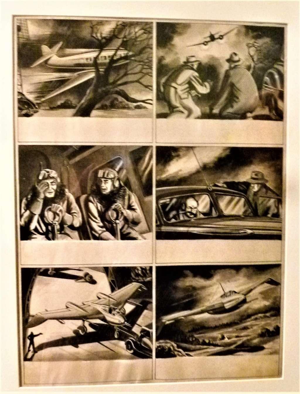 expositions consacrées à Alix - Page 4 P1420020