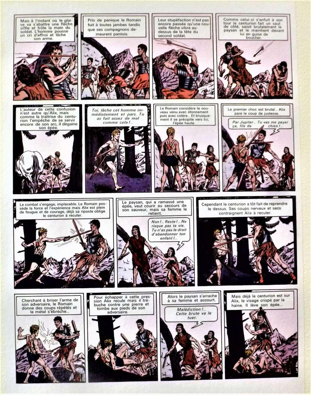 expositions consacrées à Alix - Page 4 P1420033