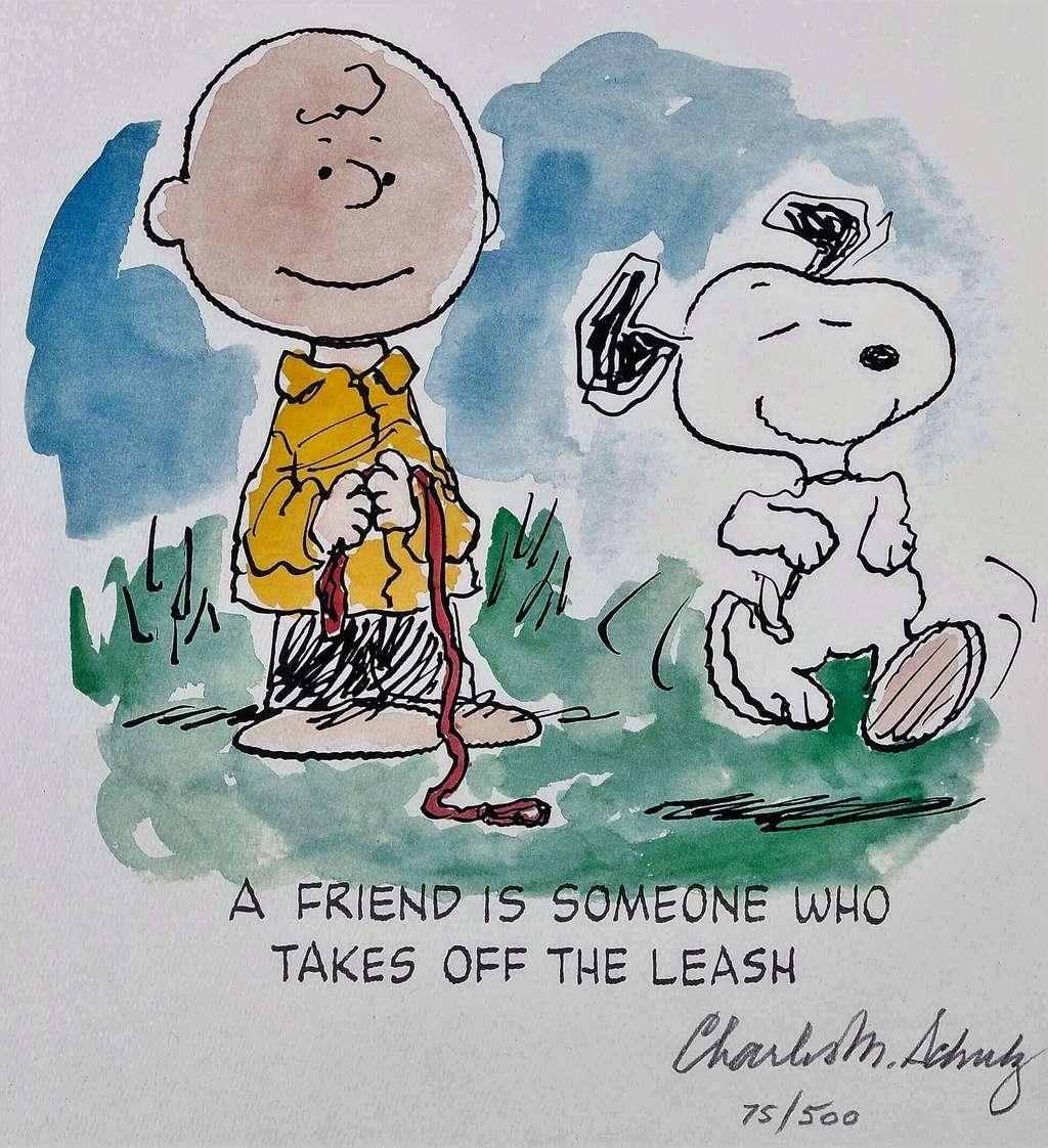 """La saga """"Peanuts"""" - Page 6 Schult10"""