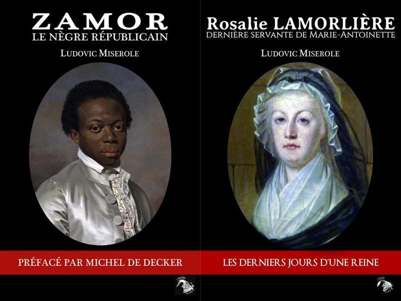 Les romans de Ludovic Miserole 15941010