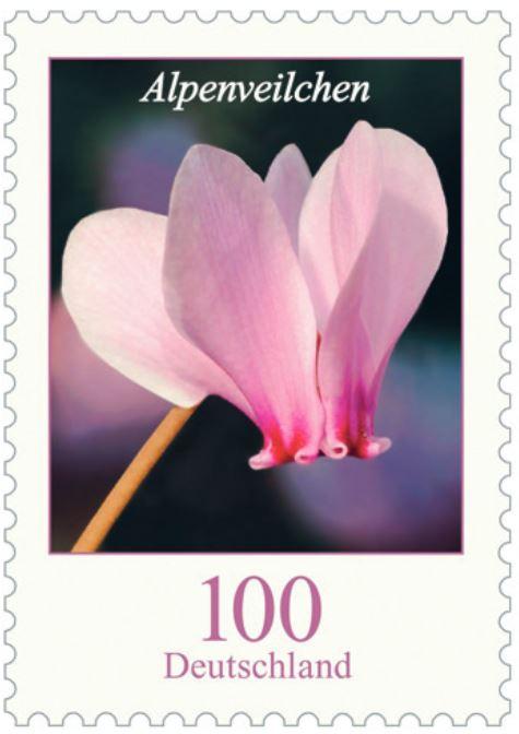 Blumengruß aus Deutschland - Seite 2 1_alpe10