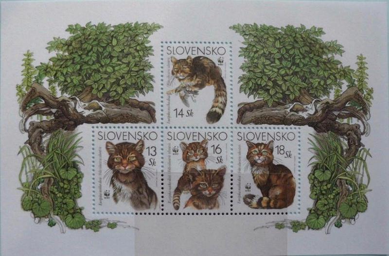 Katzen Katzen11