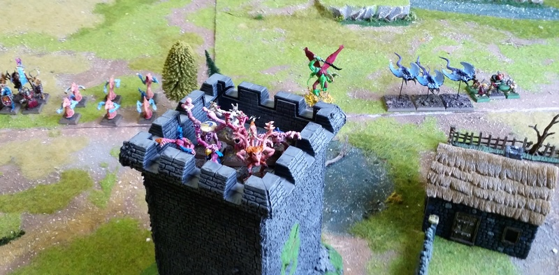 Warhammer Fantasy, Galerie de Batailles - Page 16 20180420