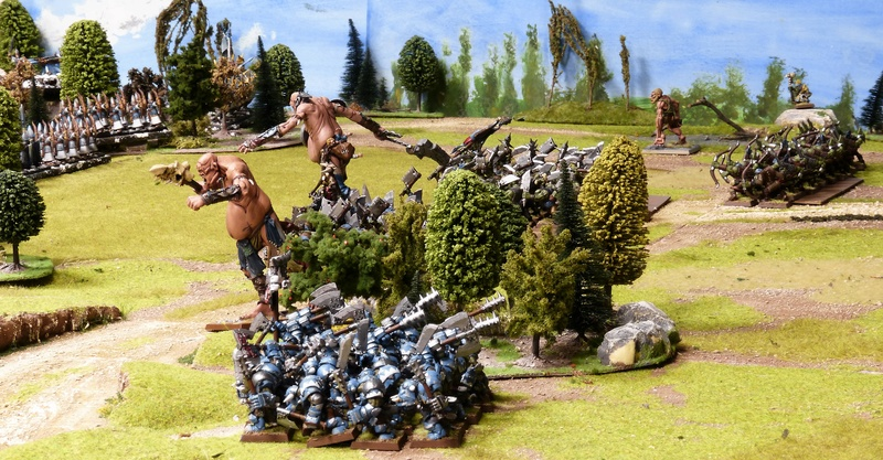 Warhammer Fantasy, Galerie de Batailles - Page 16 P1200144