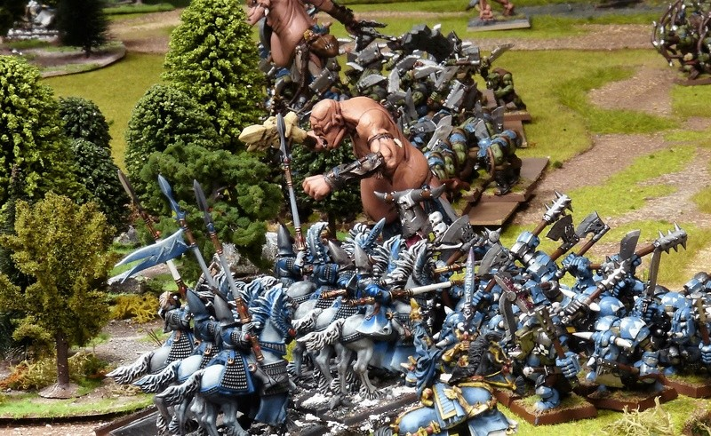 Warhammer Fantasy, Galerie de Batailles - Page 16 P1200151