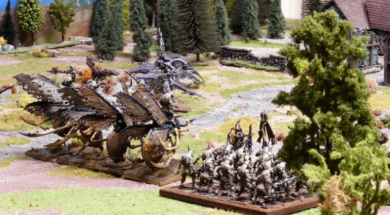 Warhammer Fantasy, Galerie de Batailles - Page 16 P1200237