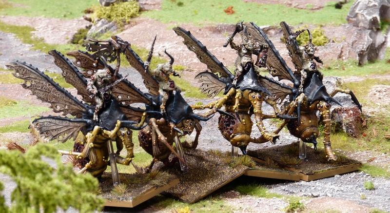 Warhammer Fantasy, Galerie de Batailles - Page 16 P1200238
