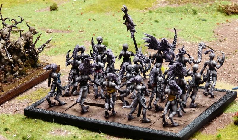 Warhammer Fantasy, Galerie de Batailles - Page 16 P1200239