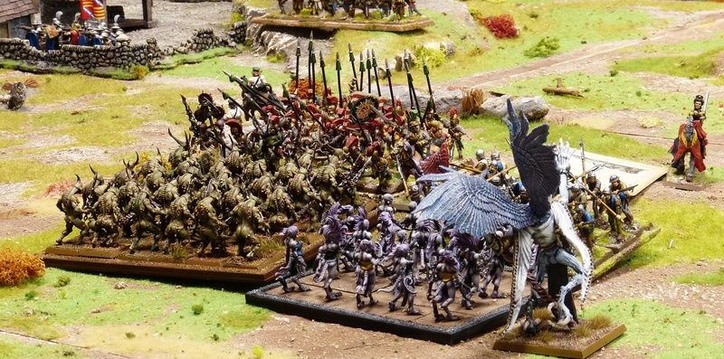 Warhammer Fantasy, Galerie de Batailles - Page 16 P1200245