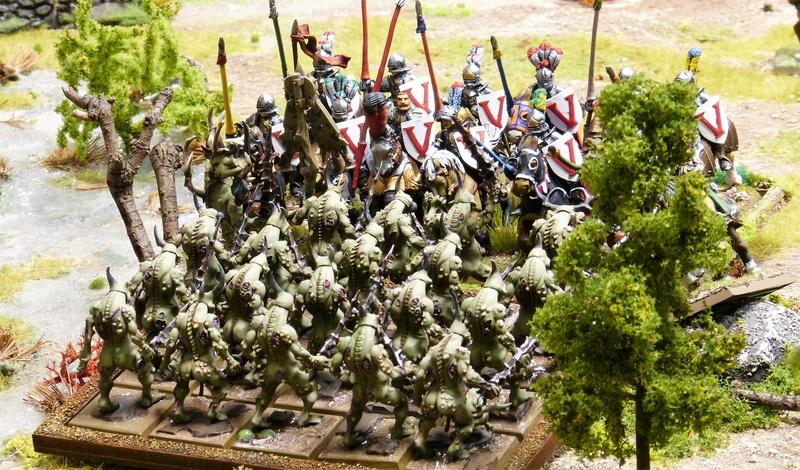 Warhammer Fantasy, Galerie de Batailles - Page 16 P1200250