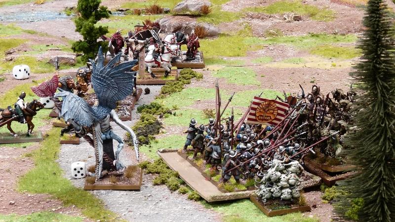Warhammer Fantasy, Galerie de Batailles - Page 16 P1200260