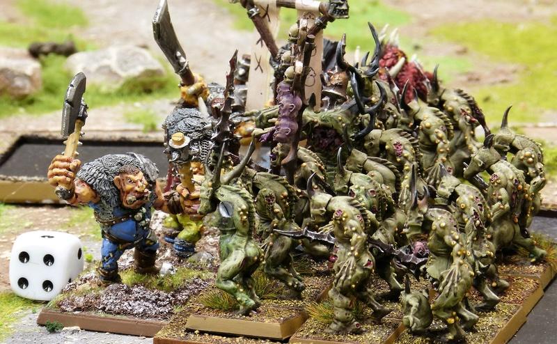 Warhammer Fantasy, Galerie de Batailles - Page 16 P1200261