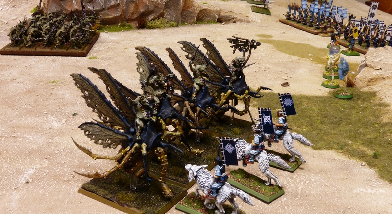 Warhammer Fantasy, Galerie de Batailles - Page 16 P1200395