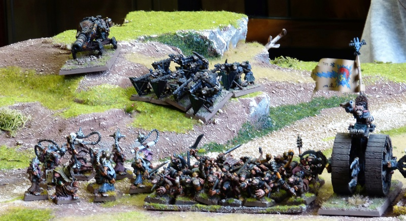 Warhammer Fantasy, Galerie de Batailles - Page 16 P1200429