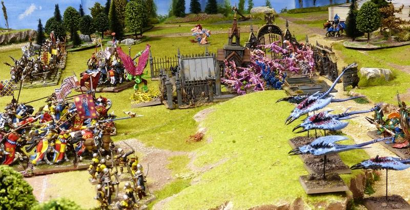 Warhammer Fantasy, Galerie de Batailles - Page 16 P1200456