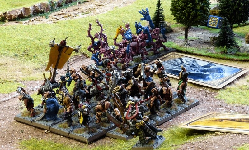 Warhammer Fantasy, Galerie de Batailles - Page 16 P1200731