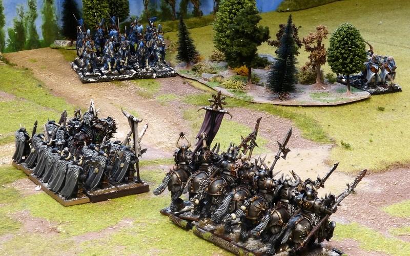 Warhammer Fantasy, Galerie de Batailles - Page 16 P1200845