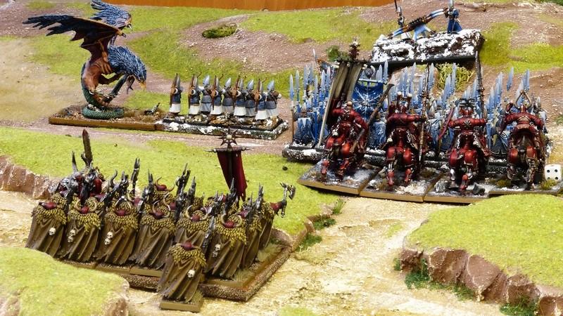 Warhammer Fantasy, Galerie de Batailles - Page 16 P1200846