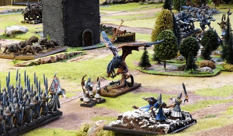 Warhammer Fantasy, Galerie de Batailles - Page 16 P1200848