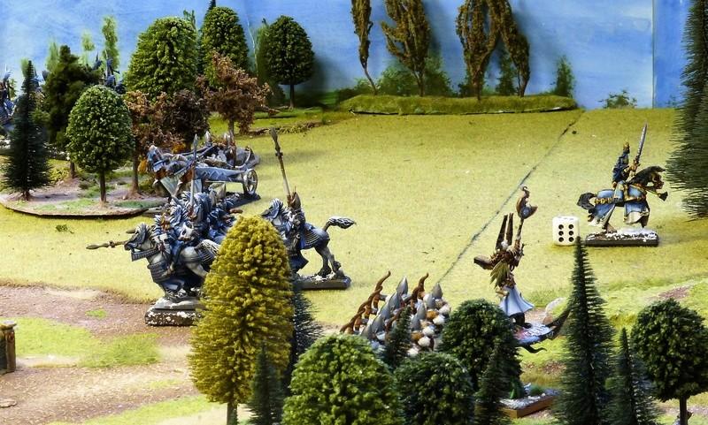 Warhammer Fantasy, Galerie de Batailles - Page 16 P1200849