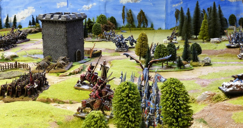 Warhammer Fantasy, Galerie de Batailles - Page 16 P1200850